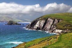 Seascape Dingle της ακτής, ιρλανδική αγελάδα κομητειών Στοκ Εικόνες