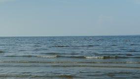 Seascape do céu das ondas vídeos de arquivo