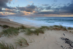 Seascape dunes Stock Photography