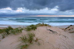 Seascape dunes Royalty Free Stock Images