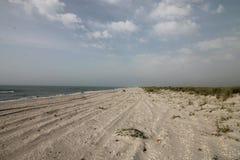 Seascape, dzika plaża, ocean fala Zdjęcie Stock