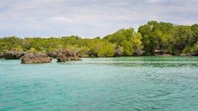 Seascape e manguezais Zanzibar foto de stock royalty free