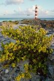 Seascape em Cancun, México fotos de stock