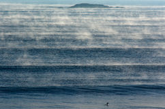 Seascape of fog over cold sea waves Royalty Free Stock Image