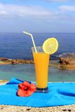 Seascape and fruit cocktail Royalty Free Stock Photo