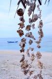 Seascape, Gil powietrze, Indonezja obrazy stock
