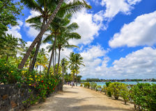 Seascape in Grand Baie, Mauritius. Grand Baie, Mauritius - Jan 10, 2017. The path with many palm trees in Grand Baie, Mauritius. Mauritius is a major tourist Royalty Free Stock Photo