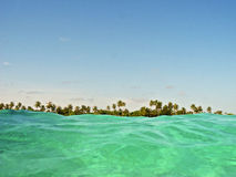 Seascape with green water and tropical trees on the horizon Stock Images