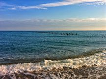 Seascape with gulls on columns. Blue sky, wave and gulls on old columns Stock Photography
