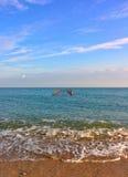 Seascape with gulls on columns. Sand beach, blue sky and gulls on columns Royalty Free Stock Photos