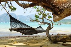 Seascape with hammock . Stock Image