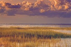 Seascape of Hilton Head Island. Seascape, sunrise, sunset in Mitchellville Park Beach in Hilton Head Island, South Carolina Stock Photos