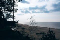 Seascape i Lettland Royaltyfri Foto