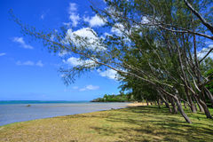 Seascape in Le Morne, Mauritius. Sand beach with blue sea at sunny day Stock Image