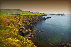 Seascape litoral cénico irlandês vibrante Imagens de Stock