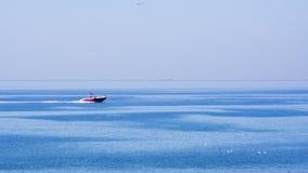 Seascape med fartyget, skeppet och fiskmåsar Fotografering för Bildbyråer