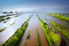 Seascape med grön havsväxtmossa vaggar på i Barrika Fotografering för Bildbyråer