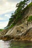 Seascape med vaggar, och dungar av relicten sörjer trädet arkivfoto