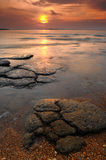Seascape of Mollusk Fossil Site,Thailand Stock Image