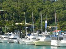 Seascape with mooring yachts in the marina, the marina with houses,  in the blurred background  trees,,Whitsunday. Islands Australia Stock Photo