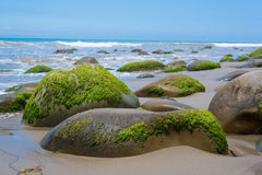 A seascape with moss covered rocks on California coast Stock Image
