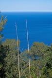 Seascape mountain view Mallorca Royalty Free Stock Photo
