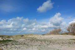Seascape na Bałtyckiej brzegowej natury prezerwie z długim piaskowatym se fotografia stock