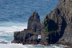 Seascape na costa Imagem de Stock