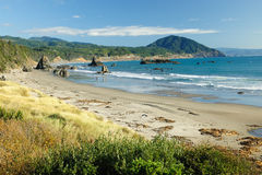 Seascape in oregon Stock Photo