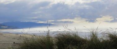 Seascape Oregon Imagem de Stock