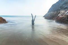 Seascape på den malvan stranden royaltyfri foto