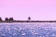 Seascape på solnedgången Arkivbild