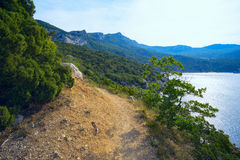 The seascape .The path to the shore of the Black sea . Stock Photography