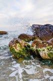 Seascape podczas zmierzchu w Odesa Ukraina Obraz Stock