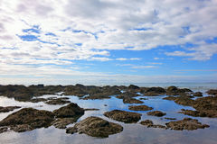 Seascape of reef Royalty Free Stock Images