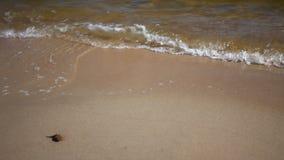 Seascape. Sea or ocean water shore. Stock Photo