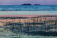 Seascape. Sea sunrise and Blue sky Royalty Free Stock Photos