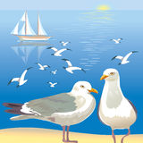 Seascape with seagulls Royalty Free Stock Image