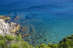 Seascape. Shore and blue sea in Elba Island Stock Image
