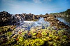 Seascape som är scenary av korallbildande på den Sawarna stranden, Indonesien Royaltyfri Fotografi