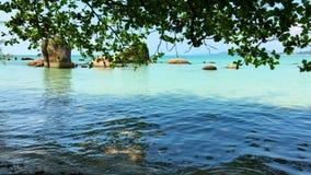 Seascape som är scenisk av tropiskt land arkivfilmer
