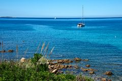Seascape with some plants and rocks on the beach and a sailing boat. Moored in a blue sea Stock Photo
