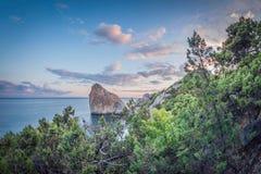 seascape stenig kust med träd på solnedgången fotografering för bildbyråer