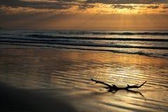 Seascape at sunrise Royalty Free Stock Images