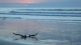 Seascape at sunrise stock video