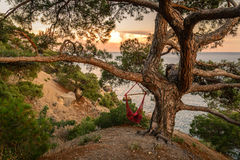 Seascape at sunset. Amazing sunset on a rocky hill in a quiet place by the sea. Hammock in the trees. Mixture pastel colors Stock Images