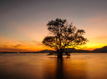 Seascape During Sunset. Klong Mudong, Phuket Thailand Stock Images