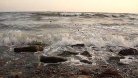 Seascape sunset the sun sets the sea wave the sea foam. stones coast stock video footage