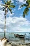 Seascape tropical Imagens de Stock