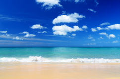 Tropical beach. Blue sky and clear water Stock Photography